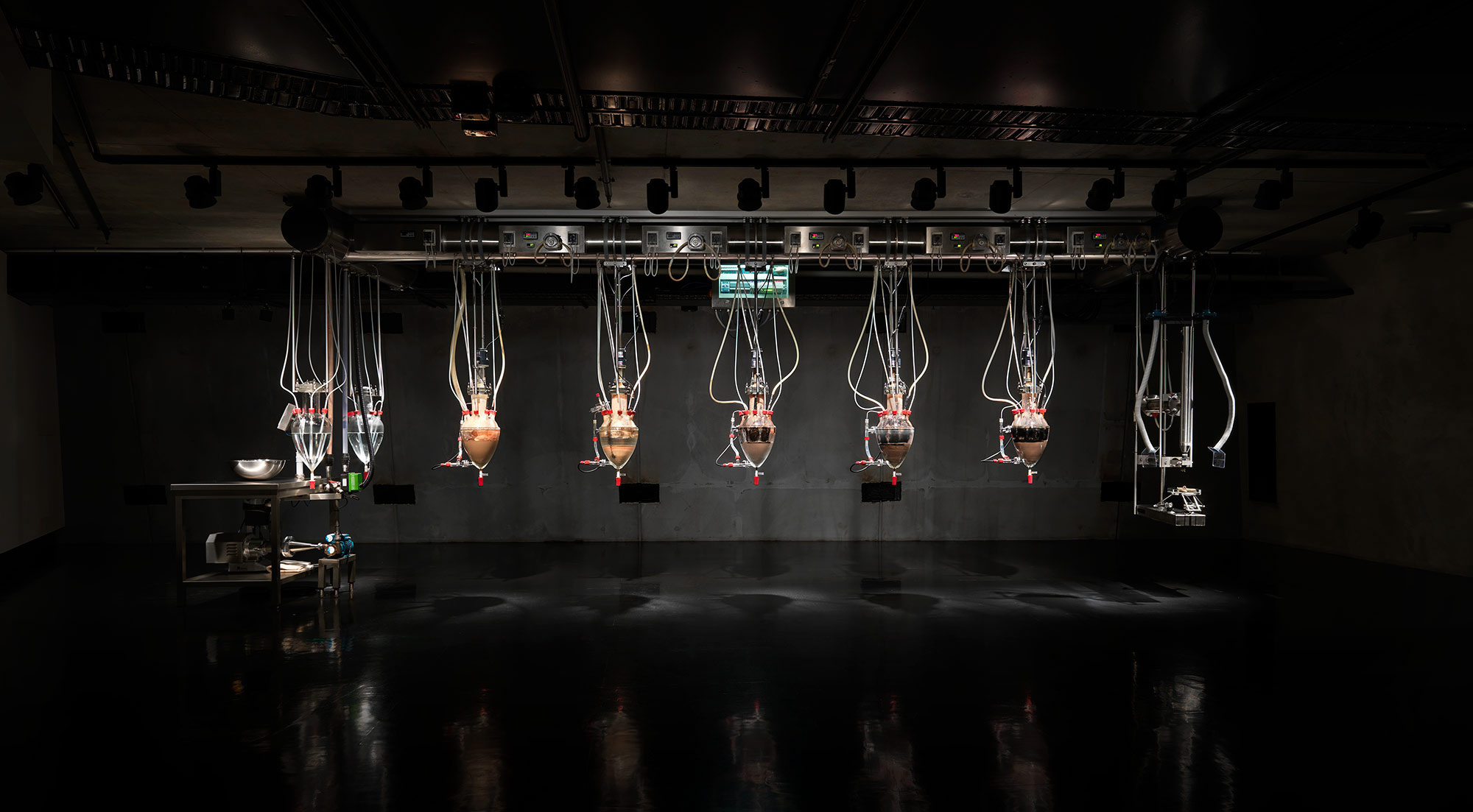 At the Museum of New Art in Tasmania, Australia there is an art installation that replicates the digestive system. It is fed twice daily and then poos at about 2pm every afternoon.